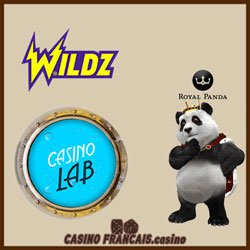 top-5-casinos-alimentes-developpeur-yggdrasil